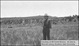 Liston Flat Pasture 1945