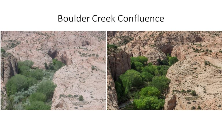 Boulder Creek Confluence