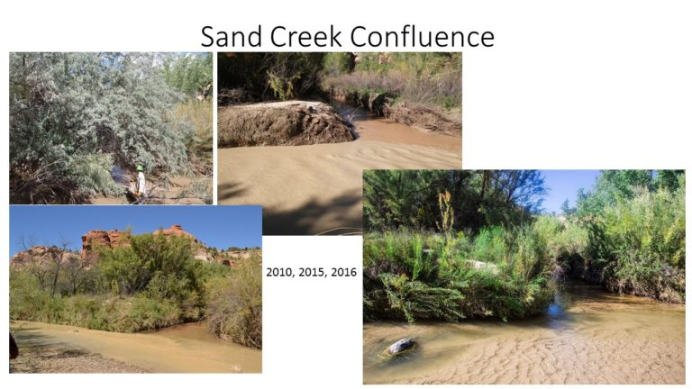 Sand Creek Confluence