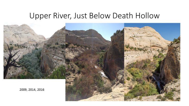 Upper River Below Death Hollow