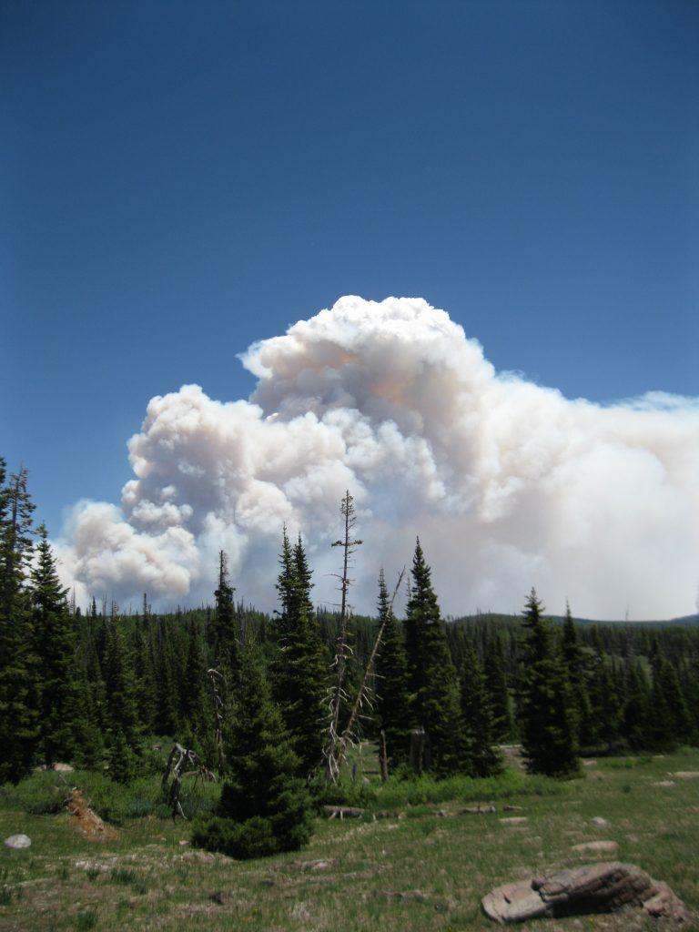 Brianhead Fire in 2017